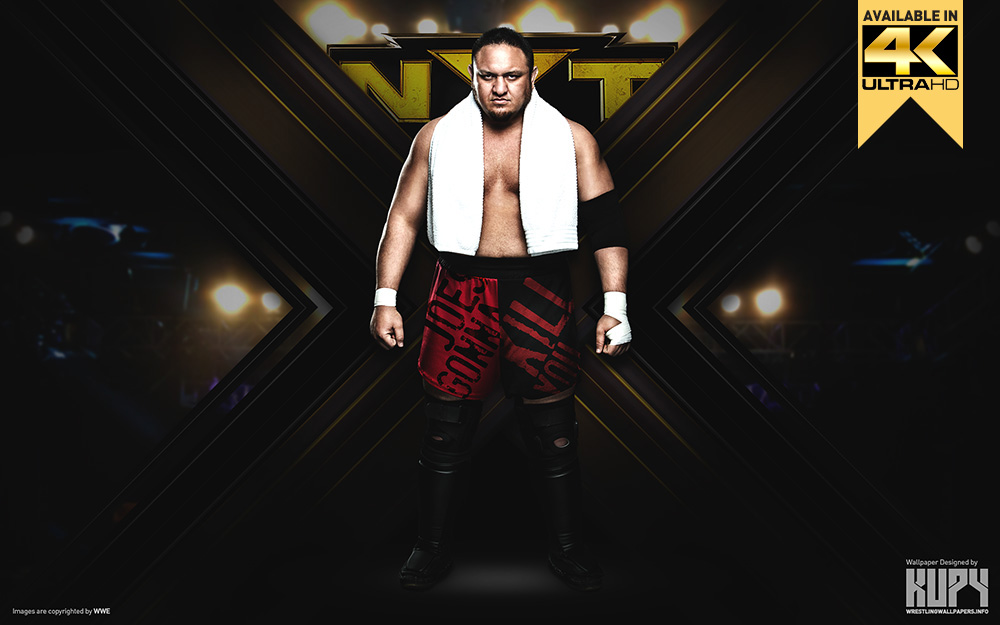 samoa joe nxt wallpaper