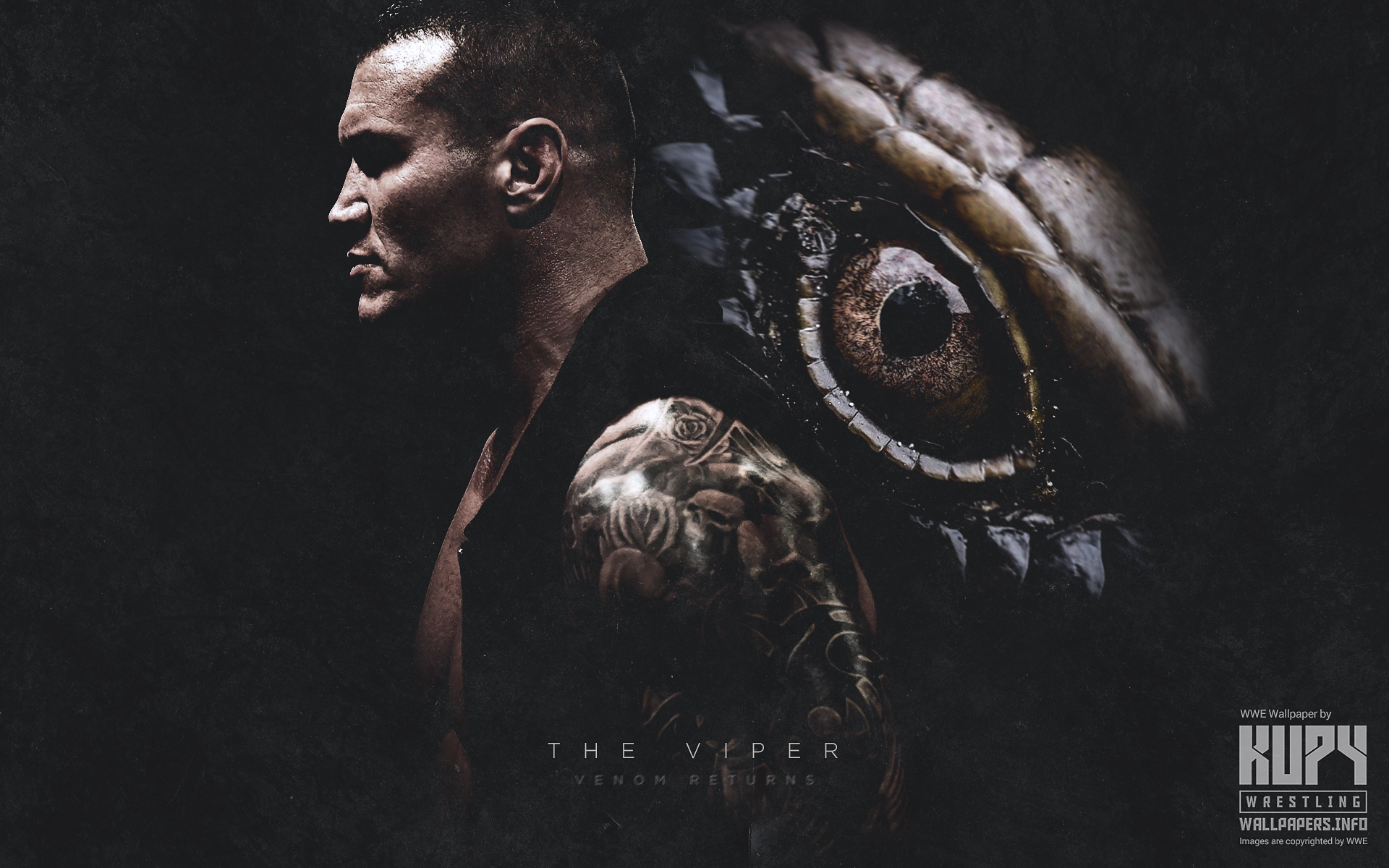 The Viper Randy Orton Venom Returns Wallpaper Kupy Wrestling