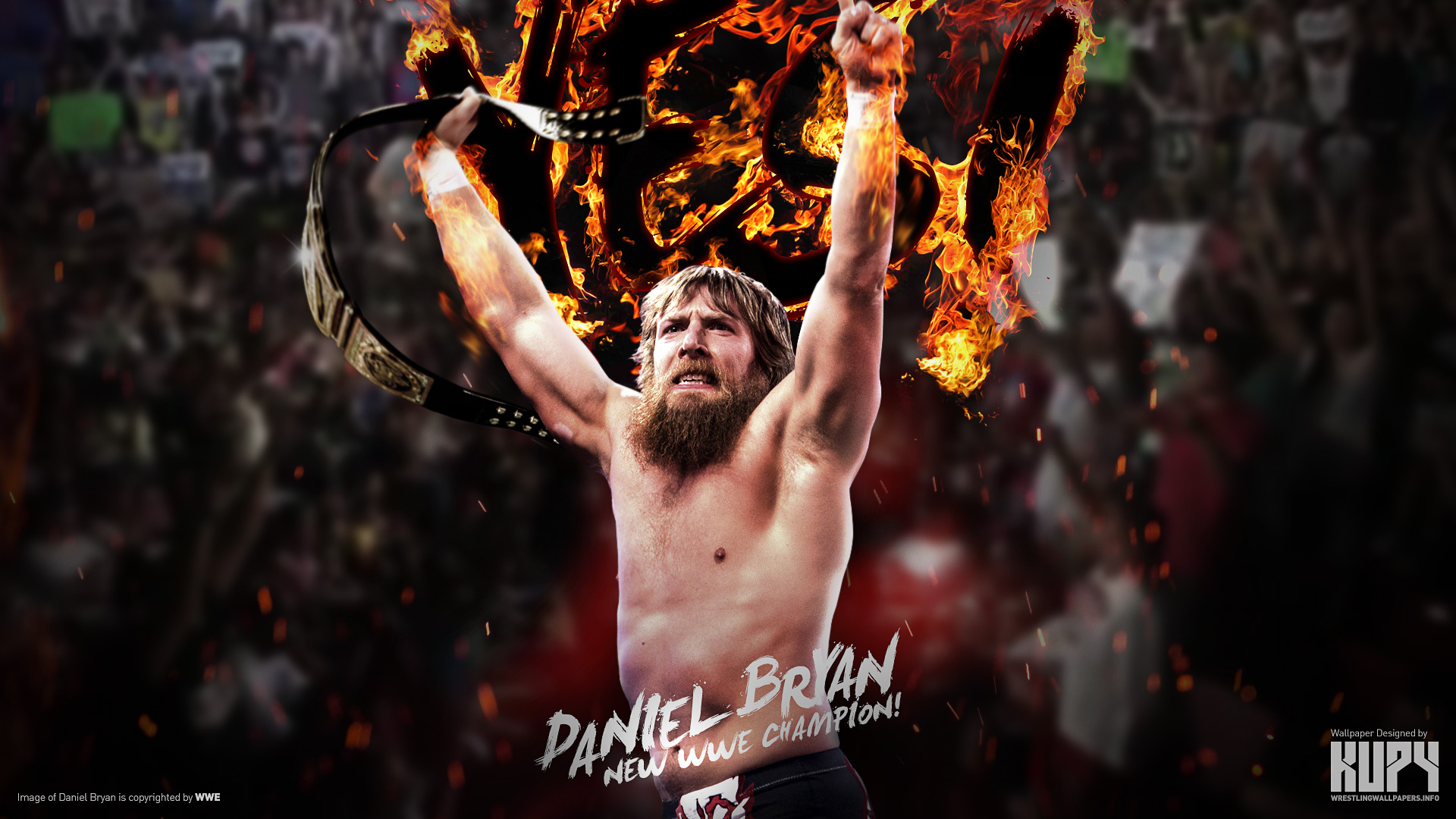Kupywrestlingwallpapersfo the newest wrestling wallpapers on wwe champion daniel bryan wallpaper 19201200 19201080 voltagebd Images