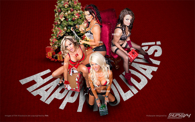 Sexy TNA Knockouts wallpaper